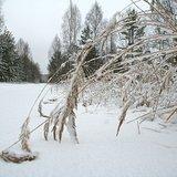 Выпал снег-2